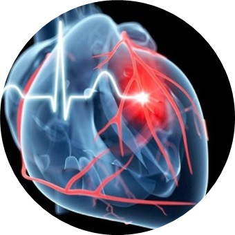 Heartcircle