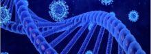 تاثیر ژنتیک بر میزان حساسیت و شدت کووید-19-