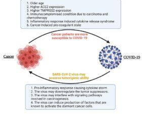 ارتباط بین کووید-19 و سرطان در یک نما